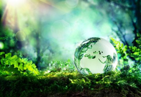 """Miljöministern: """"Plastindustrin är en av de större källorna"""""""