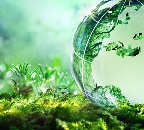 Skapa förståelse för miljön