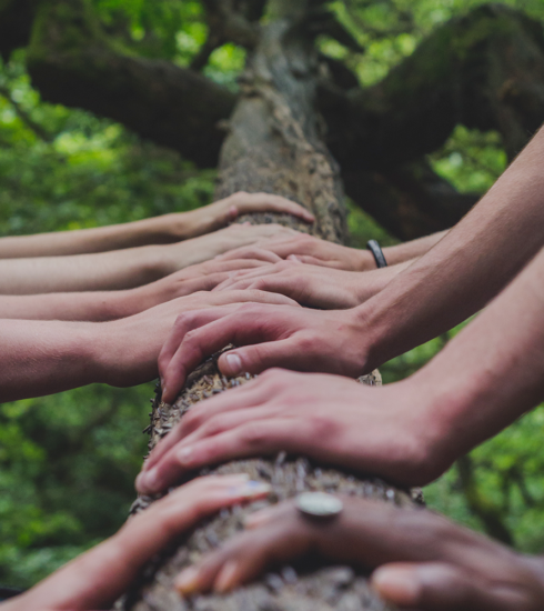 Teambuilding – Steg 1