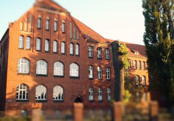 Lärarfacket: För lite tid för historia i skolan