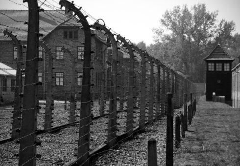 Klart med snubbelstenar i Stockholm till minne av Förintelsens offer