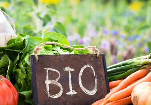 Efterfrågan på ekologiska produkter har stannat av