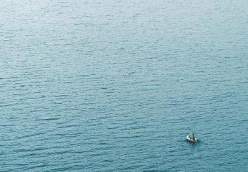 Glädjebeskedet: Fler svenska insjöfiskar får grönt ljus av WWF